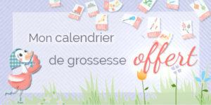 Un calendrier de grossesse gratuit
