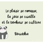 Phrase de Bouddha sur la vie